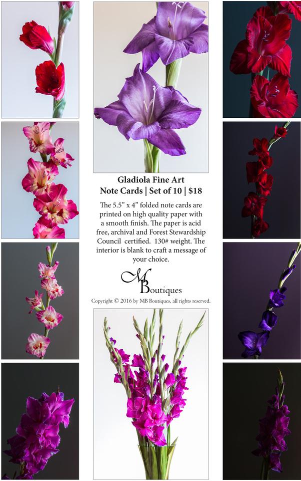 Gladiola Fine Art Note Cards | Set of 10 | $18