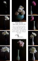 Peony Fine Art Note Cards | Set of 10 | $18